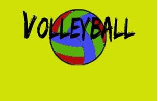 Picture for category Volleyball