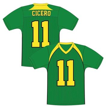 Picture of Football Jersey Style 329STD Custom